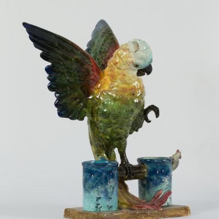 perroquet en furie