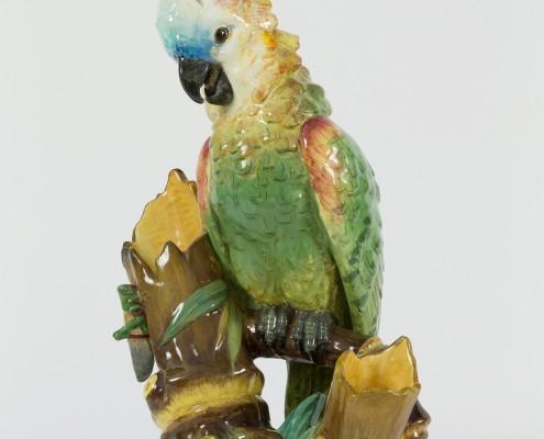perroquet et sauterelle