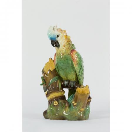 perroquet massier